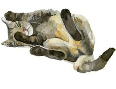 Look it Madison! if it had blue eyes it would be perfect. Watercolor Tabby by ryliecat.deviantart.com on @deviantART