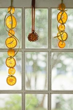 Window Decorations for Christmas : window decoration for christmas cookies dry orange slices Christmas Gingerbread, Christmas Love, Diy Christmas Gifts, Winter Christmas, Christmas Cookies, Christmas Ornaments, Beautiful Christmas, Christmas Window Decorations, New Years Decorations