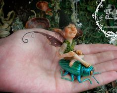 Classic Fairies. Little people. The fairy boy on the green beetle. Fantasy Art figure. Ooak Art Doll polymer clay One of a Kind Fantasy Sculpture