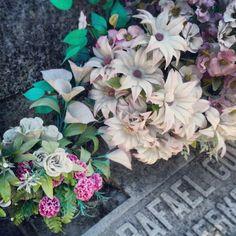 Flowers in la Almudena