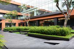 Paisagismo no Campus Corporativo Coyoacán,Cortesia de DLC Arquitectos