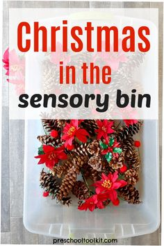 A fun sensory bin with pine cones will be a favorite activity this holiday. Mix in a few poinsettias and pompoms to add awesome texture and creative play. #christmas #sensorybin Christmas Pine Cones, Christmas Wreaths, Holiday Crafts, Holiday Decor, Preschool Christmas, Sensory Bins, Creative Play, Poinsettia, Infant