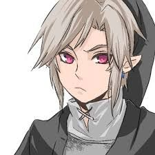 Dark Link. Huh, Ben and him look so much alike............... it's scary. No, it's awesome! =D