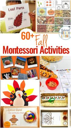 60+ Montessori Activities for Fall - Montessori Fall Themes Free Printable - Natural Beach Living
