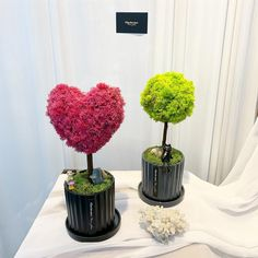 Glass Domes, Glass Vase, Moss Graffiti, Moss Art, Topiary, Plant Decor, Valentines Day, Creative, Plants