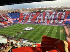 Atlético de Madrid x Bayern de Munique  Belo mosaico da torcida do Atlético no jogo de hoje, pela semifinal da Champions League.