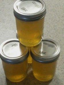 Bundrick's Honey Lemon Jelly