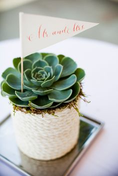 Succulents do double duty as place cards and wedding favors