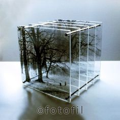 Bildearkiv - Latest images registered:mageID.: gma0001 Title: Cubes, 2001-2005. Plexiglass sculptures, 12 x 12 to 30 x 30 cm, handmade photographic transparencies in layers. Keywords:Trees/Trær. Woods/Skogen. Depth/Dybde. Volume/Volum. Perspective/ Perspektiv. Borrehaugene. Artist: Galina Manikova/BONO. Copyright Fotofil