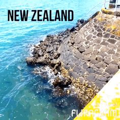 #Explore the stunning #landscapes of the #beautiful #island of #NewZealand with #memorymaker katelyn michel in today's #Nowvel #photobook! Print YOUR own FREE photo book like this album by katelyn michel!