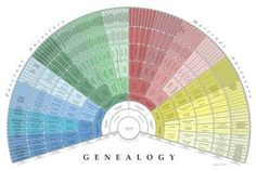 Free 9-generation Genealogy Fan Chart. log in using your familysearch.com account info.