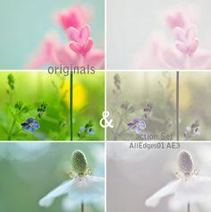 Free Photoshop Actions | AlexEdg