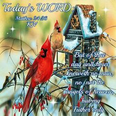 """TODAY'S WORD: Matthew 24:36 (1611 KJV !!!!) """" But of that day and hour knoweth no man, no, not the angels of heaven, but my Father only."""""""