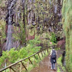 #madeiralovers #madeiradigital #madeira #25fonteserisco #25fontes #madeiraisland #madeiraislands #holiday #nature #portugal #visitmadeira by txilvi233