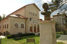 muzeul casa cuza voda galati - Căutare Google