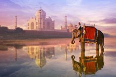 Agra - Getty Images