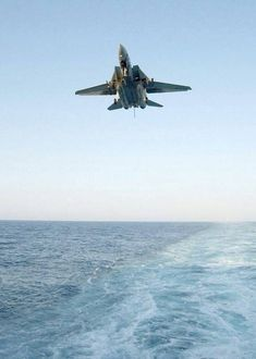 Tomcat on final Military Jets, Military Weapons, Military Aircraft, Air Fighter, Fighter Jets, Photo Avion, Where Eagles Dare, Fun Fly, F14 Tomcat