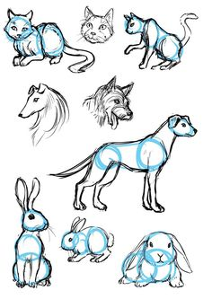 40 Free & Easy Animal Sketch Drawing Information & Ideas 40 Free & Easy Animal Sketch Drawing Ideas & Inspiration – Brighter Craft Cute Easy Drawings, Cute Animal Drawings, Drawing Animals, Animal Sketches Easy, Manga Drawing, Sketch Drawing, Drawing Ideas, Sketch Ideas, Drawing Tips