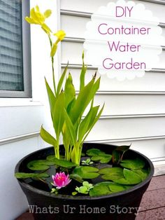 Make your own water garden on your deck or porch! You can even have fish in it. DIY container water garden tutorial. http://www.whatsurhomestory.com