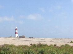 House sit East Anglia  House Sitter Needed  rural village, Southwold   Suffolk,East Anglia England  Aug 29,2015 For 18 days