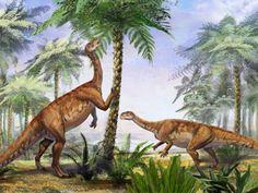 Színek és foltok Jurassic World 3, Jurassic Park, American Crocodile, Feathered Dinosaurs, Dinosaur Discovery, Dinosaur Facts, All Dinosaurs, National History, Prehistoric Creatures