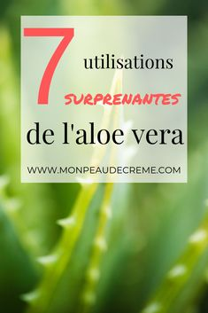 Creme Visage Aloe Vera, Aleo Vera, Healthy Lifestyle, Self, Herbs, Thoughts, Voici, Diy Beauté, Routine