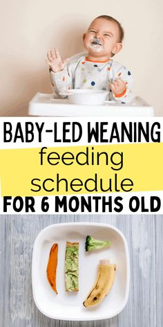 Baby Led Weaning Recipes 6 Months, Baby Led Weaning First Foods, Weaning Foods, Baby First Foods, Baby Lef Weaning, Baby Foods, Baby Meal Plan, Baby Food Schedule, Baby Feeding Schedule