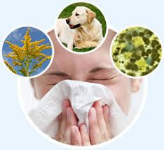 Pathology of allergy An allergy refers to an abrupt hypertensive reaction with varied symptoms after contact with an allergen. Well, an allergen is an agent that's harmful to an individual who is allergic to it. Allergens aren't harmful to other individuals. They include things such as pollens,...