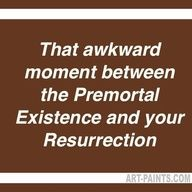 You know! That thing called our entire mortal existsnce? More comonly known as life? Yea. Talk about awkward! #MormonFavorites