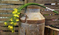 Kreativ Fryd Blomsterbinderi. Brudearbeid, Holmestrand, Gul. Strå og orkideer. Watering Can, Canning, Creative, Home Canning, Conservation