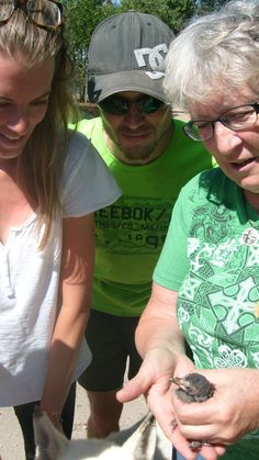 Emma and Arnaud ( French ) called on a bird rescue volunteer to help them with an injured baby bird.