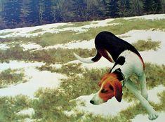 Alex Colville, Hound in Field, 1958