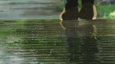 Kotonoha no Niwa ~ The Garden Of Words Building Illustration, City Illustration, Aesthetic Gif, Aesthetic Videos, Aesthetic Backgrounds, Cityscape Wallpaper, Gif Background, The Garden Of Words, Your Name Anime