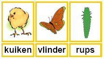 Juf Sanne Lesidee: Lente woordkaarten Dutch Language, Preschool, Kids, Crafts, Seeds, Young Children, Boys, Manualidades, Kid Garden