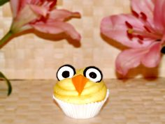 Easter cupcake -Organic frosting