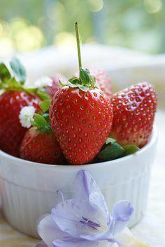 winter strawberries...