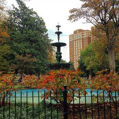 Autumn in Monroe Park. #MyVCUfall