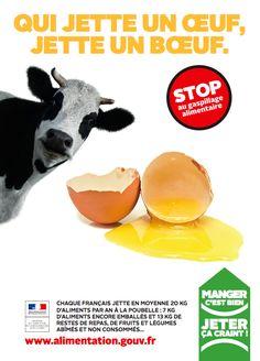 mobilisation suscitée par la lutte contre le gaspillage alimentaire est inédite en France.