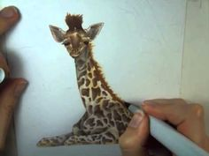 Realistic Giraffe Baby...Great tutorial and LadyeStagsleapStudio shares some wonderful tips on creating a free hand background scene.