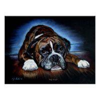 Boxer Dog print, pos