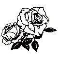 A rosa simboliza a perfeição, o amor, o coração, a paixão, a alma, o romantismo, a pureza, a beleza, a sensualidade, o renascimento; e, de acordo com sua cor, pode simbolizar a lua (branca), o sol (amarela) ou o fogo (vermelha). Universalmente, essa flor complexa e aromática representa o símbolo do amor e da união, famosa por sua beleza e seu perfume. Não obstante, o desabrochar do botão da rosa simboliza o segredo e o mistério da vida.    A Rosa na Mitologia  Na mitologia greco-romana, a…