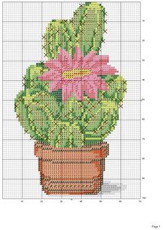 Gallery.ru / Фото #21 - cactus - patrizia61