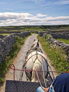 Keep an eye out for dry-stone walls as you tour Ireland's Wild Atlantic Way. These remarkable traditional walls are held together with just stone and no mortar. Aran Islands Ireland, West Coast Of Ireland, Wild Atlantic Way, Travel Pictures, Travel Pics, Going Home, Touring, Places To See, Travel Inspiration