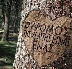 14 Δεκεμβρίου Παγκόσμια Ημέρα Αγάπης!!!  Ξεκίνα την ημέρα σου μοιράζοντας αγάπη!!!  Την αγάπη τη γιορτάζουμε κάθε μέρα του χρόνου!!!