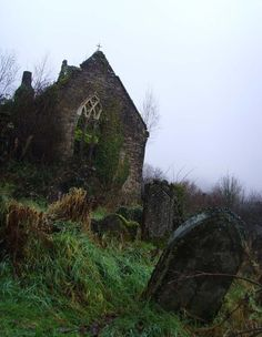 Neglected cemetery - St. Mary's, Tintern.  Wye Valley, Wales.
