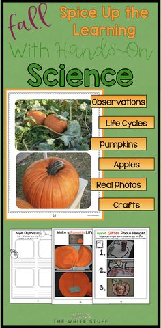 Fall Science Activit