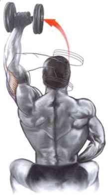 extensão_triceps_sentado_halter