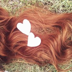 """By: Maddy Richards Redheads, do you have friends who you swear are """"'Gingers' at Heart""""? For the blondes and brunttes of the world, are you convinced you should have been born a redhead? The following cha"""