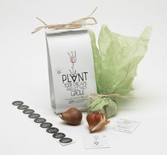 PACKAGING | UQAM: Plant Your Dreams and Let Them Grow | S. Georgopulos