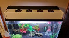 DIY Aquaponic Fish Tank Topper